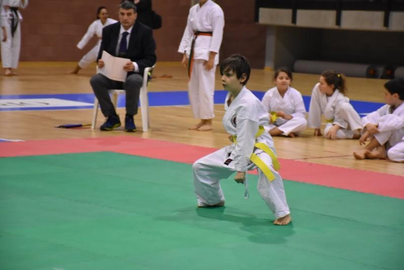 karate (81) (Copia)