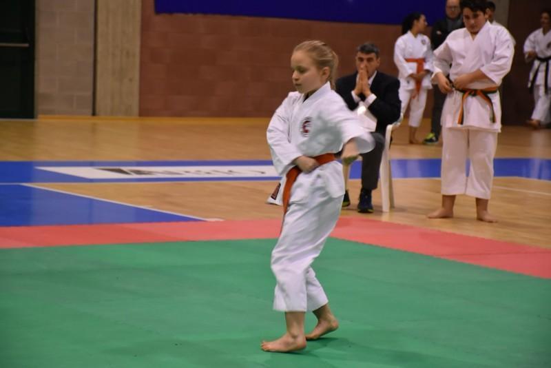 karate (84) (Copia)