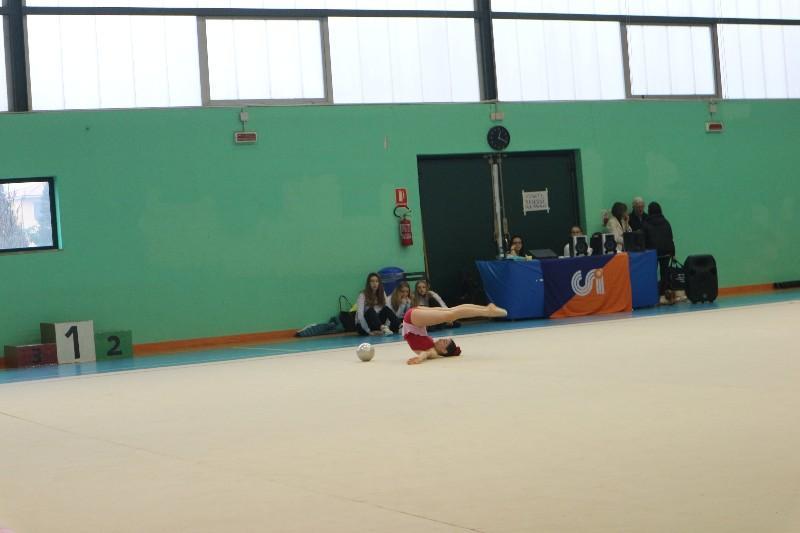 ginnastica (11)