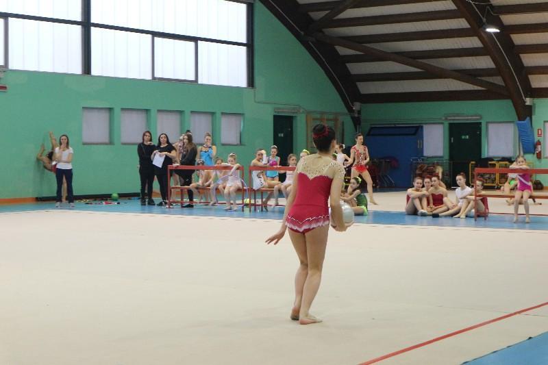 ginnastica (16)