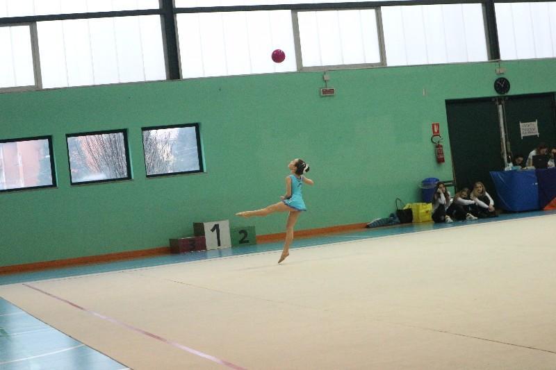 ginnastica (68)