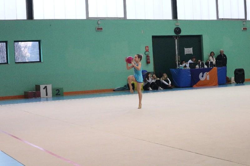 ginnastica (72)