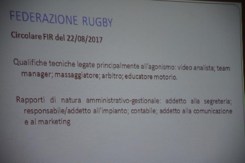 fisco (37) (Copia)