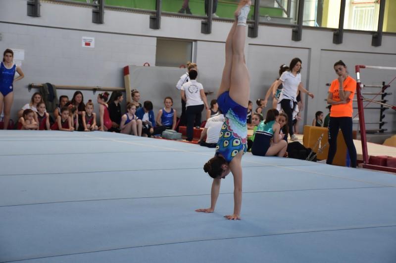 ginnastica (2) (Copia)