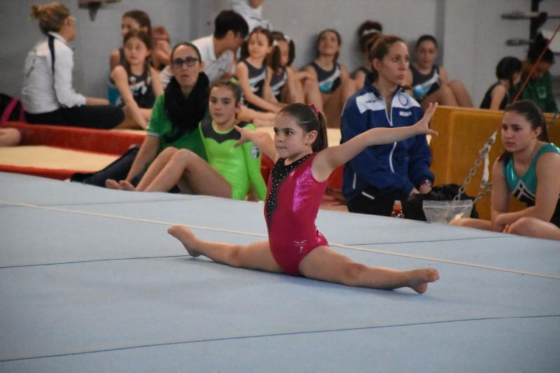 ginnastica (15) (Copia)