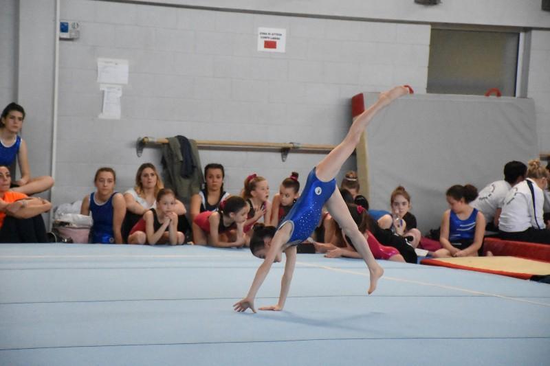 ginnastica (17) (Copia)