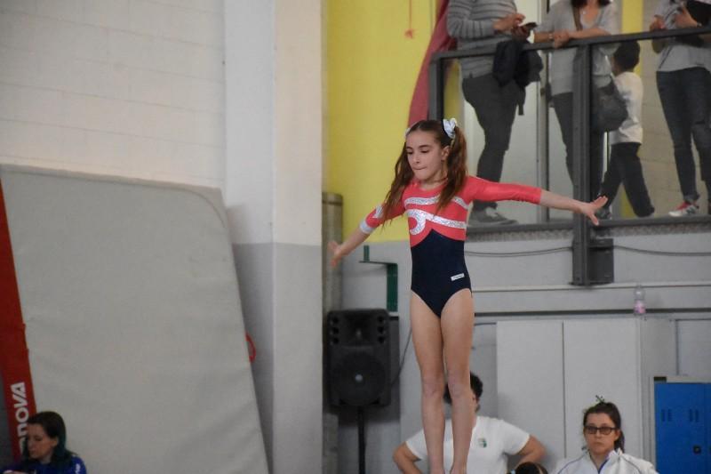ginnastica (18) (Copia)