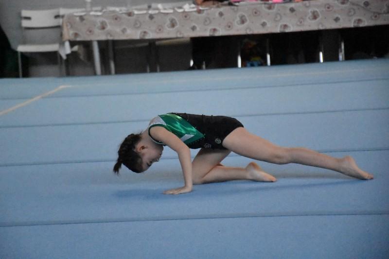 ginnastica (85) (Copia)