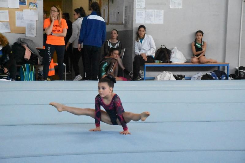 ginnastica (100) (Copia)