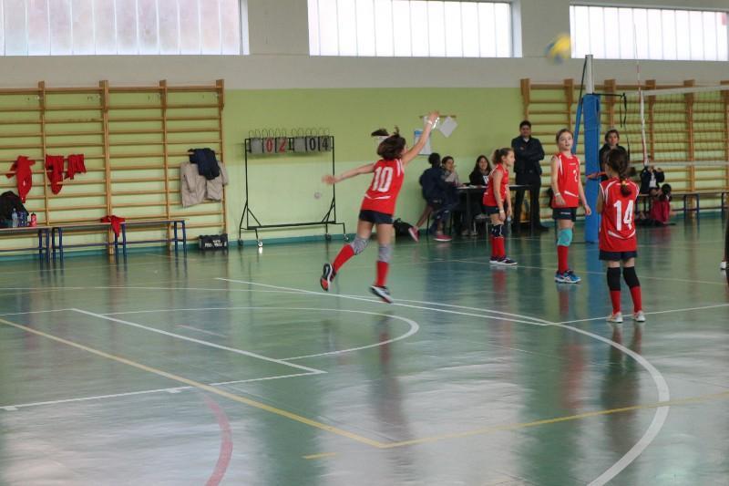 belledo (13)