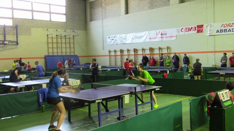 tennis tavolo (6)