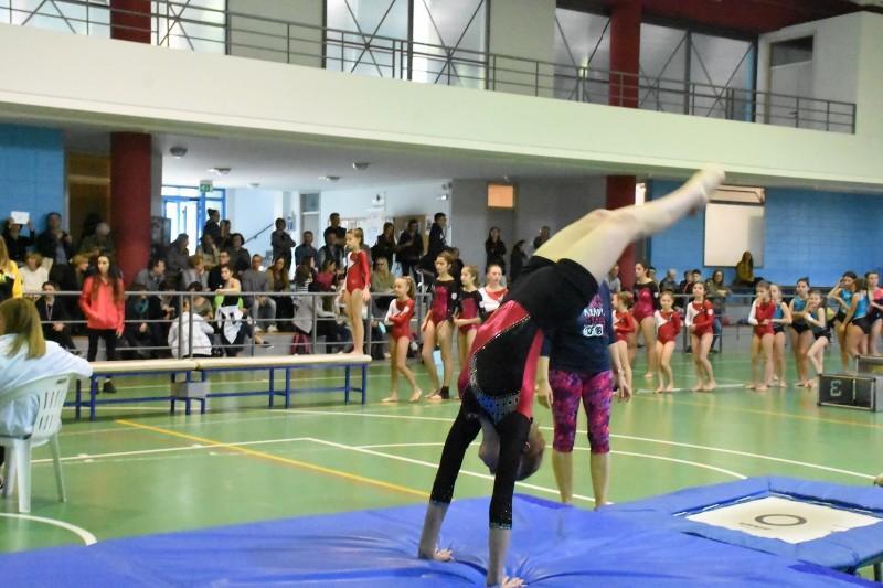 monticello ginnastica (78)
