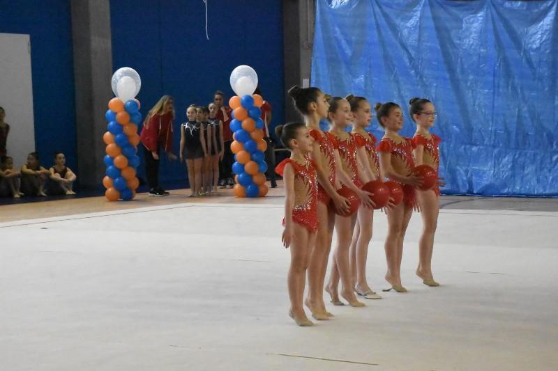 merate ginnastica (21) (Copia)