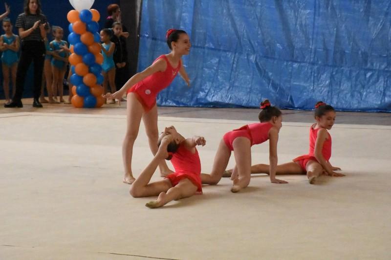 merate ginnastica (69) (Copia)