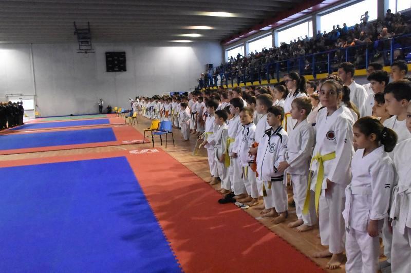 karate regionale (11) (Copia)