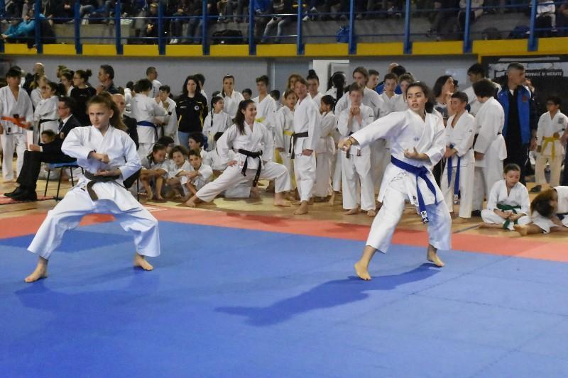 karate regionale (19) (Copia)