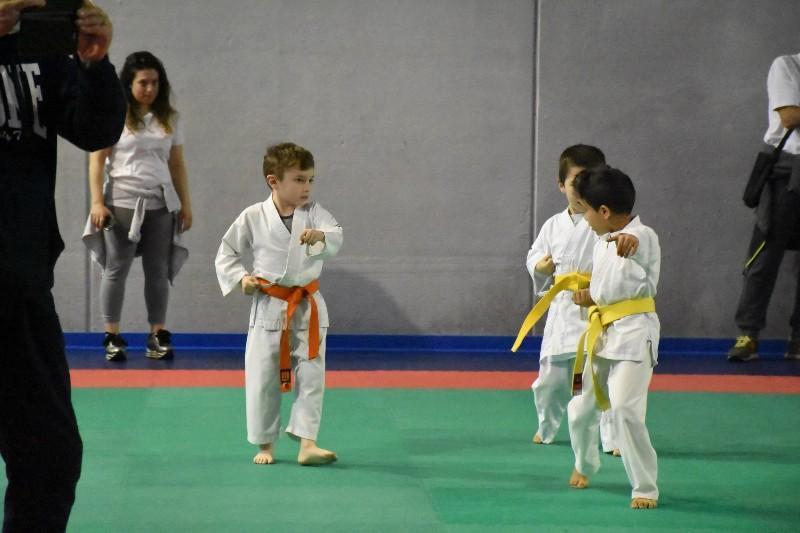karate regionale (34) (Copia)
