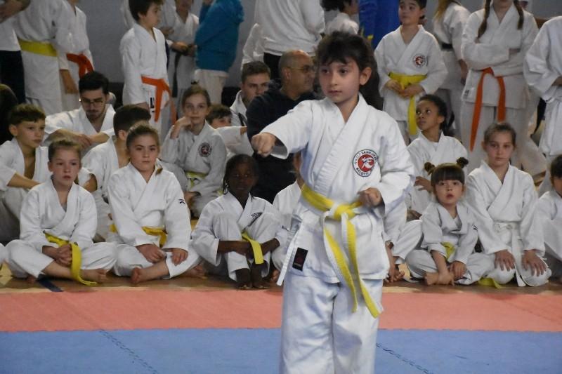 karate regionale (50) (Copia)
