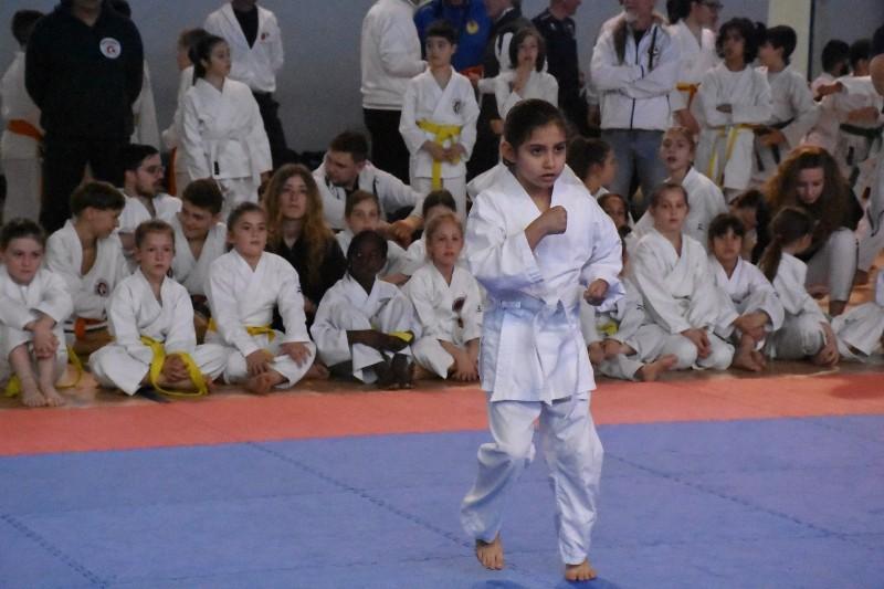 karate regionale (54) (Copia)