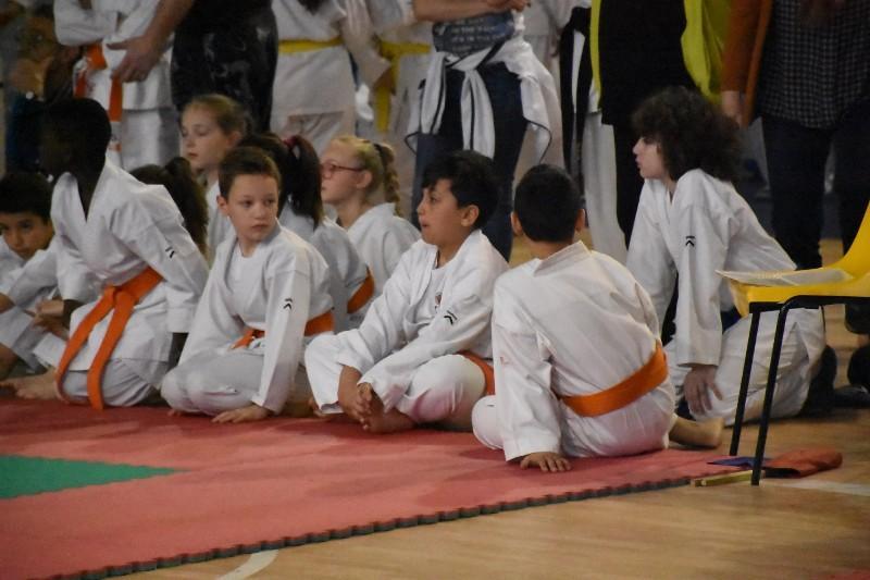 karate regionale (53) (Copia)