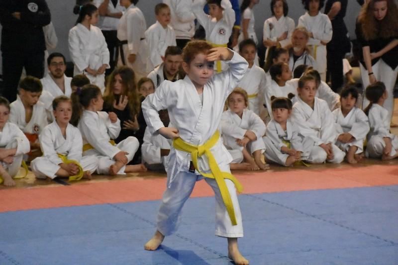 karate regionale (52) (Copia)