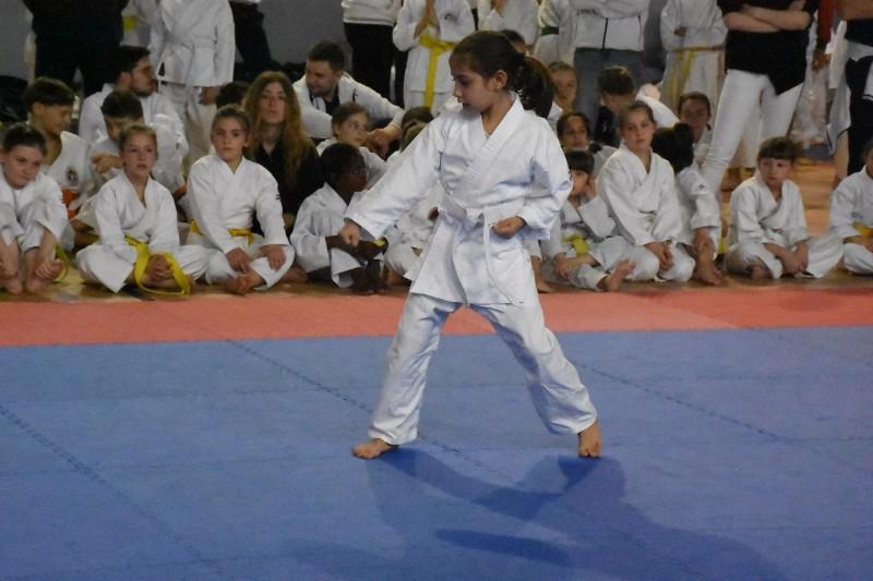 karate regionale (55) (Copia)