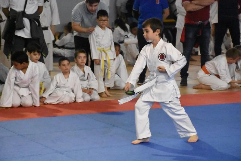 karate regionale (59) (Copia)