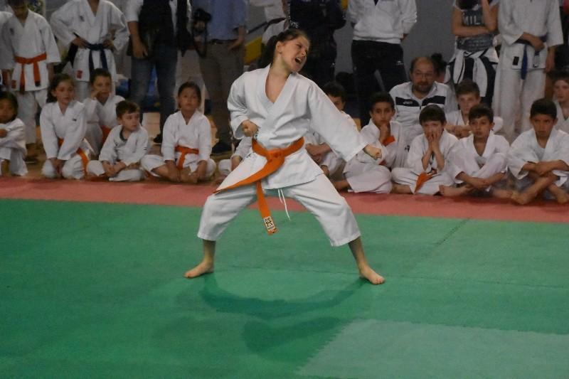 karate regionale (65) (Copia)