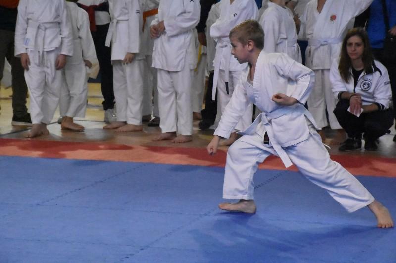 karate regionale (71) (Copia)