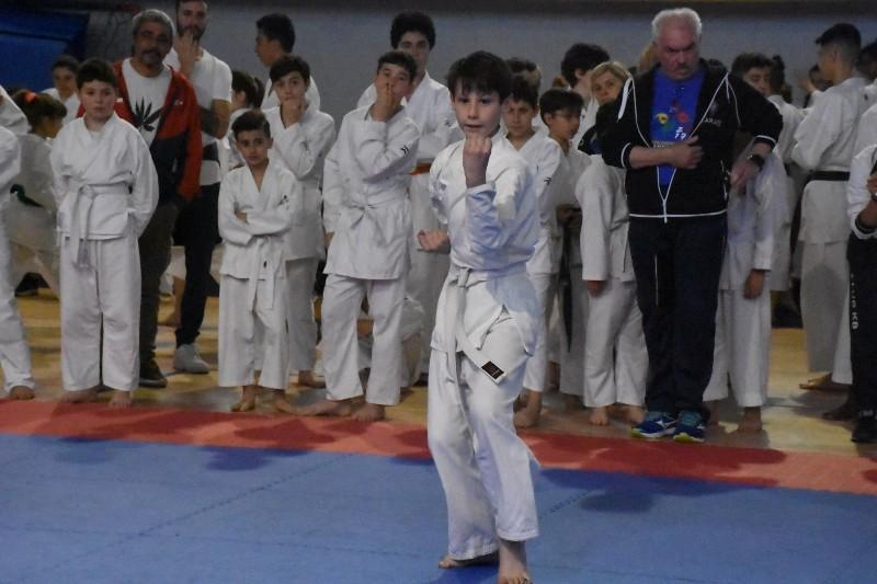 karate regionale (73) (Copia)