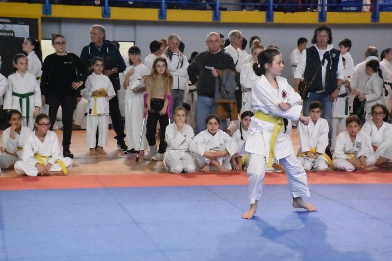 karate regionale (81) (Copia)