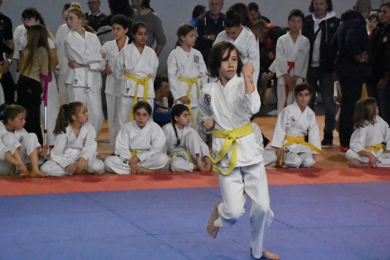 karate regionale (86) (Copia)