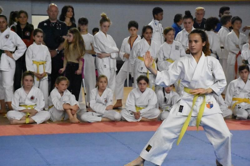 karate regionale (85) (Copia)