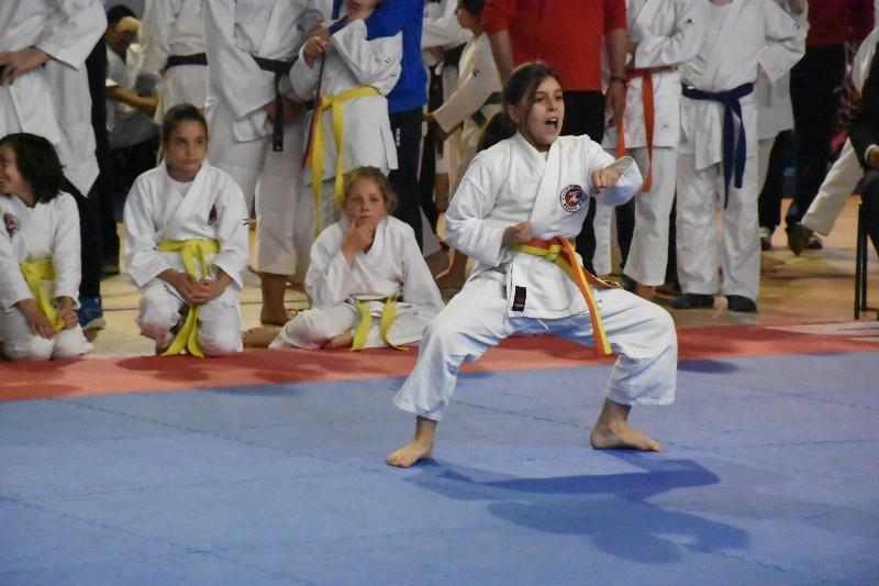 karate regionale (90) (Copia)