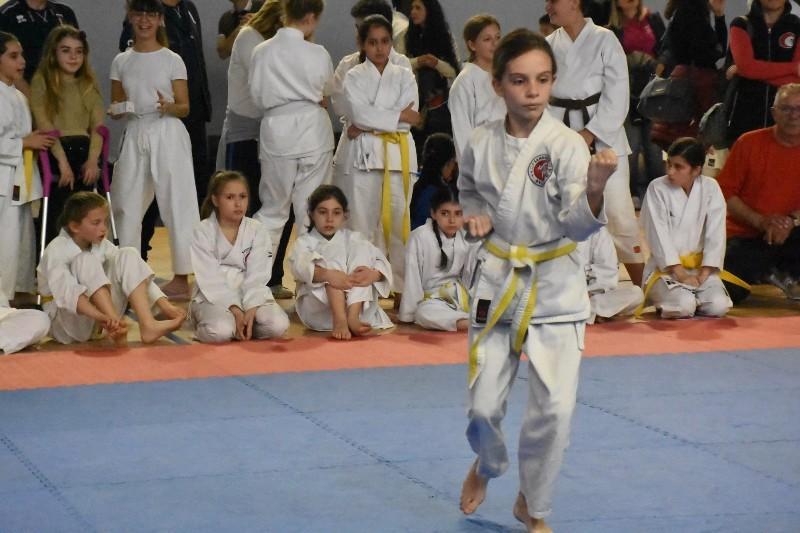karate regionale (88) (Copia)