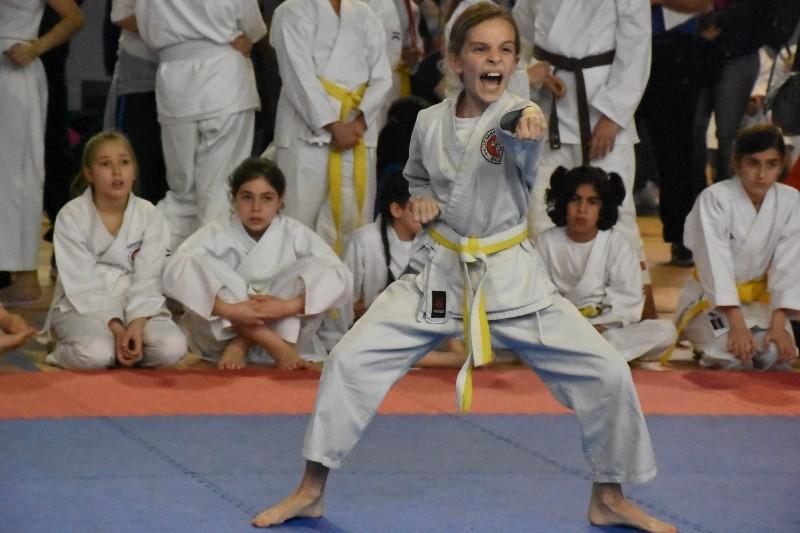 karate regionale (89) (Copia)