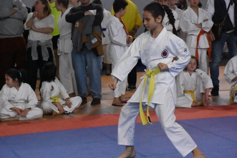karate regionale (91) (Copia)