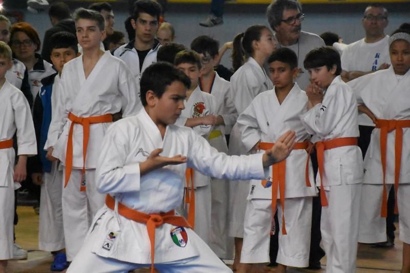 karate regionale (97) (Copia)