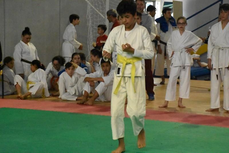 karate regionale (109) (Copia)
