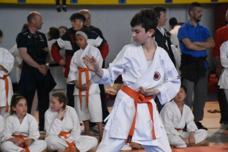 karate regionale (112) (Copia)