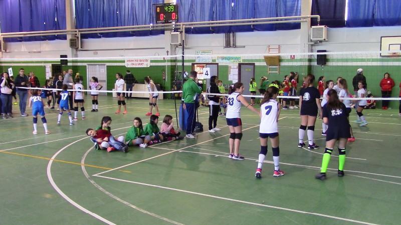 IMG6411